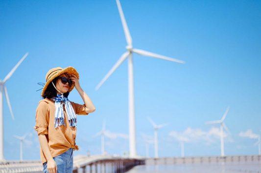 Ghé thăm cánh đồng quạt gió